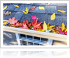Learn your roof cleaning options